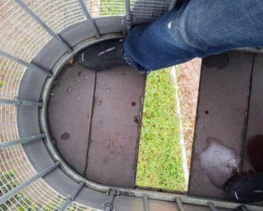 Homem Apanha Susto No Zoo De Lisboa Após Chão De Cabine De Teleférico Cair Durante Viagem 5