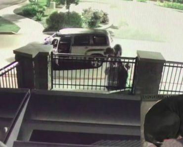 Dois Homens Filmados a Abandonar Cão Atirando-o Por Cima De Cerca Para Um Jardim De Uma Casa 2