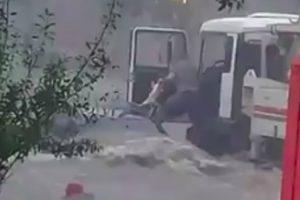 Corajoso Camionista Arrisca a Vida Para Salvar 1 Cão, 1 Gato e 1 Pessoa De Enxurrada 9