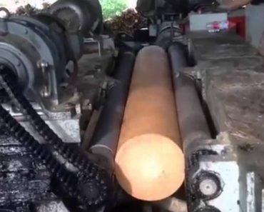 Máquina Transforma Troncos Em Finas Folhas De Madeira Em Poucos Segundos 5
