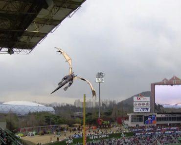 Público Fica Incrédulo Com Dragão a Voar Sobre Um Estádio De Basebol 2