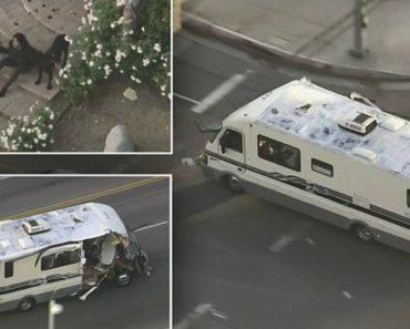 Imagens Aéreas Mostram Momento Em Que Cão Salta De Autocaravana Durante Alucinante Perseguição 5