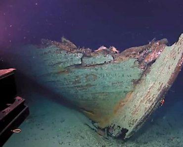 Exploradores Descobriram Por Acaso Navio Naufragado Do Século XIX 5
