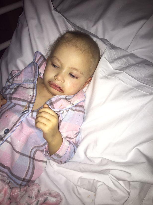Jovem Leva Irmã De 3 Anos Com Cancro Incurável Ao Seu Baile De Finalistas 6