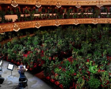 Grande Teatro