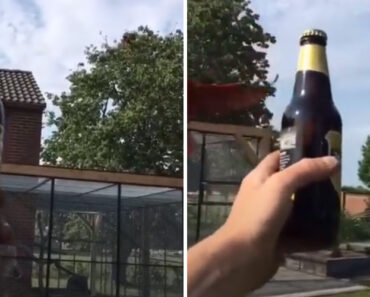 Abridor De Cerveja